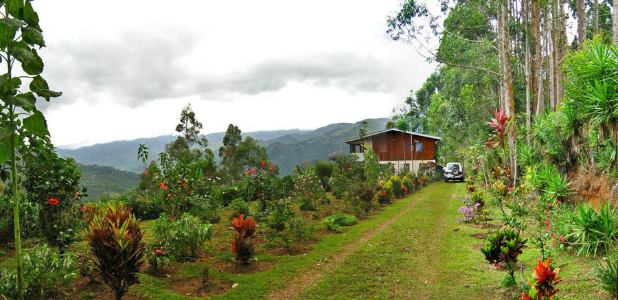 Farm for Sale in Orosi: A 37-Acre Farm with Unbelievable Views of the Orosi Valley, Cartago