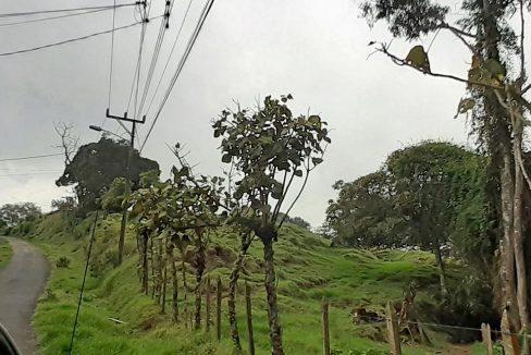 RanchoRedondo_01