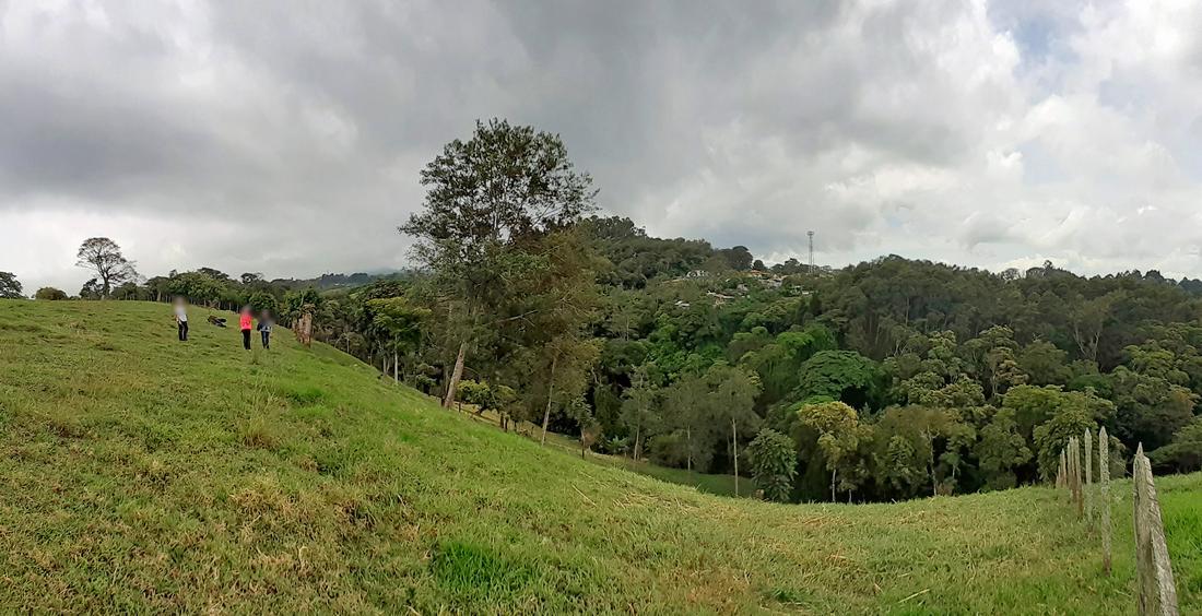 Venta de Propiedad de 6 Hectareas, Colinas al este de San José, cerca de Rancho Redondo