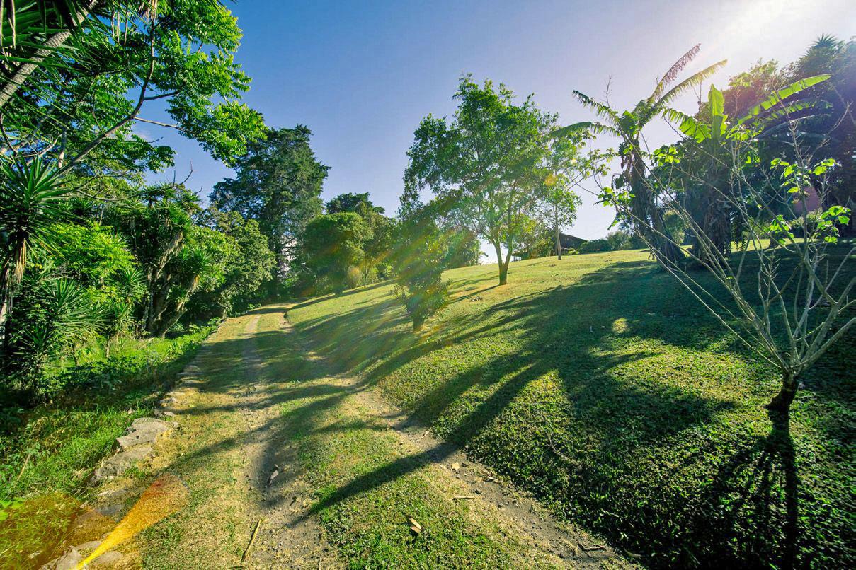 REBAJADO! Venta de Propiedad de 1 Hectarea, Ideal para Desarrollar, San Rafael, Montes de Oca