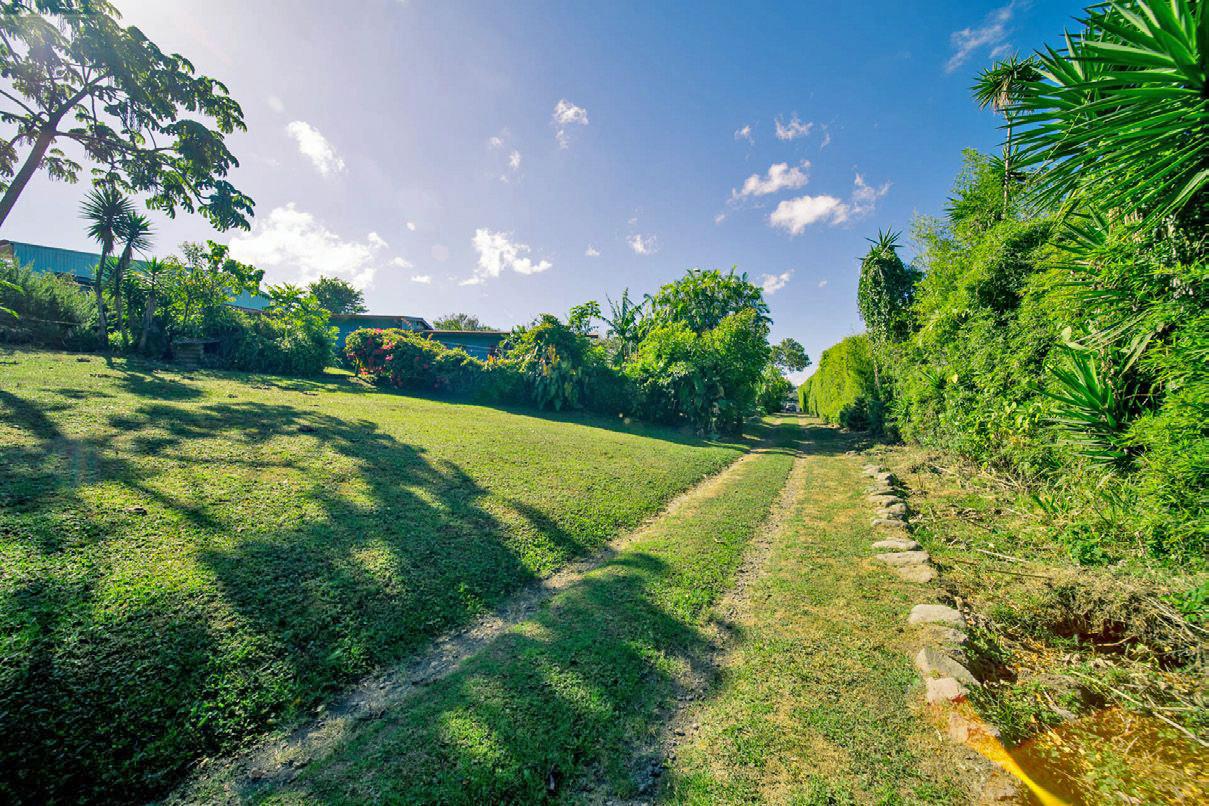 REDUCED! 3-Acre Property for Sale, Ideal for Condo Development, San Rafael, Montes de Oca